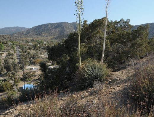 Wrightwood CA land for sale